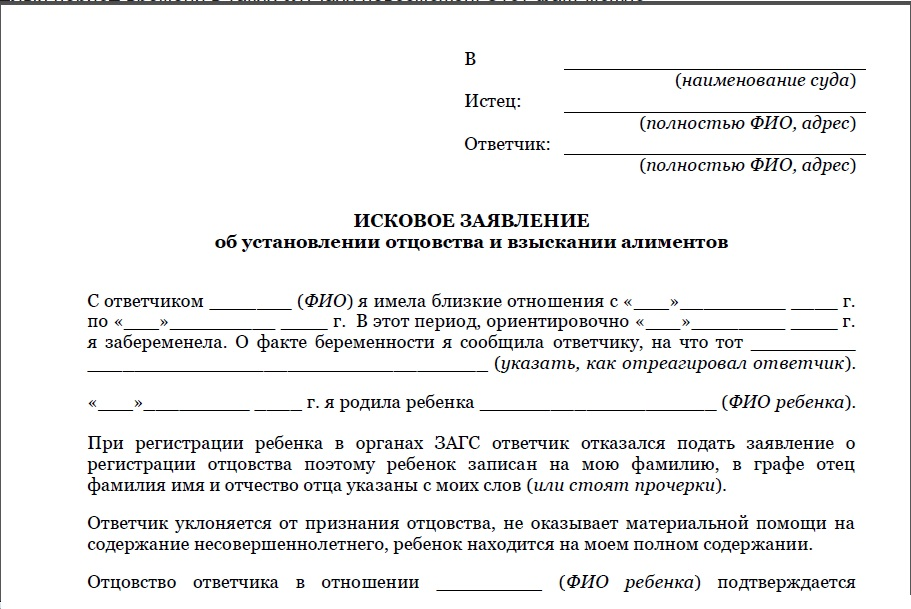 образец искового заявления на алименты в гражданском браке - фото 4